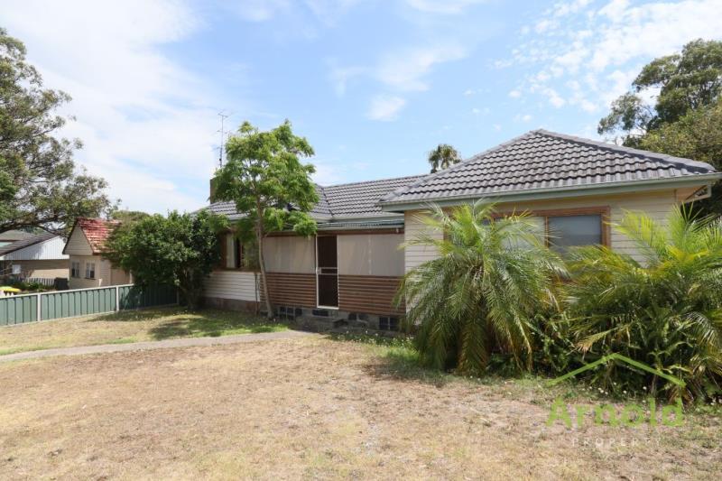 20 Rae Street, BIRMINGHAM GARDENS  NSW  2287 -